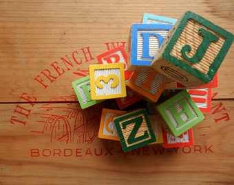 Vintage Wood Blocks / Set of Twenty / Assorted