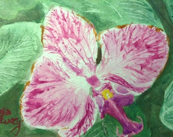 Orchid - An Original Watercolor Painting