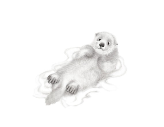 Otter Baby Sea Otter Pencil Drawing Gender Neutral Baby