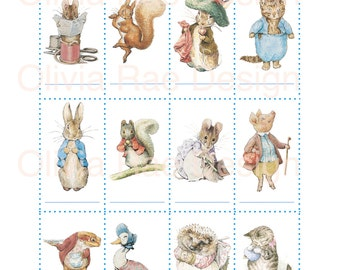 Peter Rabbit Baby Shower Game Name that Beatrix Potter Character