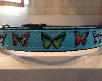 Butterfly Kisses Small and Medium Dog Collar