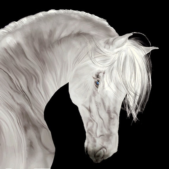 Glass Wall Art Acrylic Decor White Beautiful Horse , 5 Stars Gift Startonight 23.62 X 23.62 Inch