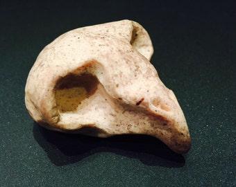 Handmade Bird Skull