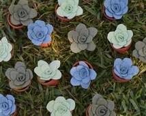 Bulk Potted Succulents for wedding favors- felt succulents in terracotta pots