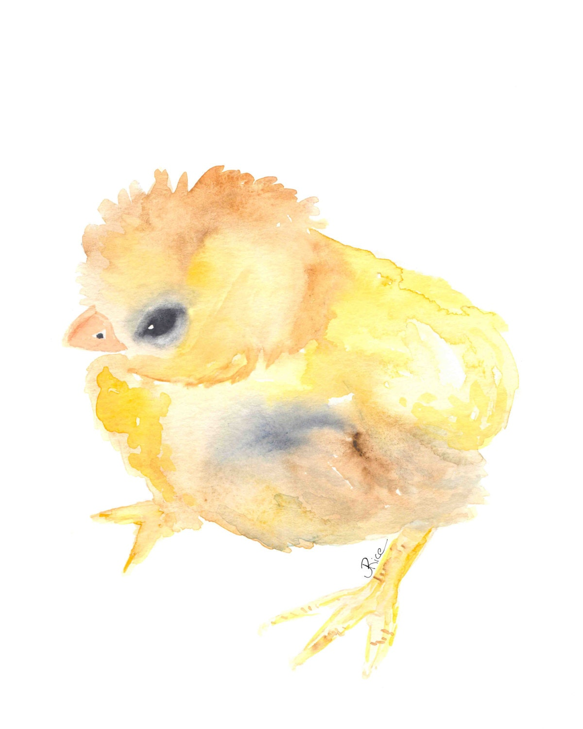 watercolor baby baby animal baby chicken