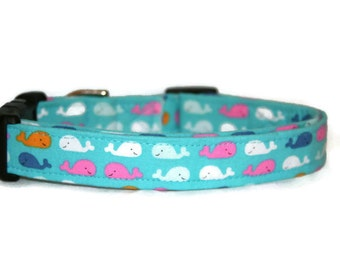 Tiny Whales Dog Collar