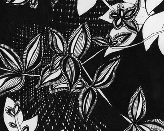 Black and White Ink Plant Illustration #28