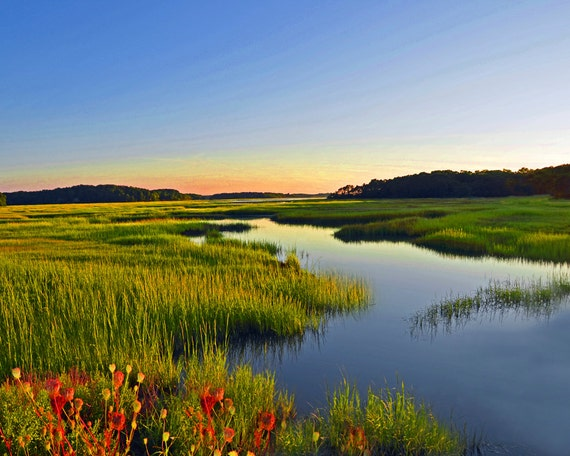 Cape Cod Marsh Fine Art Photography Wall Photo Print Coastal