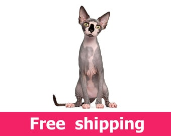 Sphynx cat wall decal, cat wall sticker, cat wall decor, cat mural, cat wall art, cat poster, cat print, cats, kitten, cat decor  [img094]