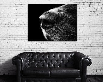 Dog, Animal Photography, Poster, Large Wall Art, Black and White Photography, Large Print, 18x24 Wall Art, Industrial, Extra Large Art