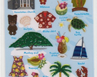 Hawaiian Items and Vocab - Mind Wave - Reference A2979-80