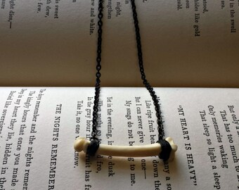 Burrow - Badger Foot Bone Specimen Necklace