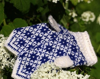 FREE SHIPPING Multicolor patterned mittens- gloves in blue and white
