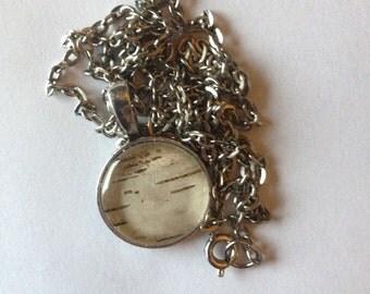 Minnesota Birch Bark Bezel Necklace - Real Birch under Glass Cabochon