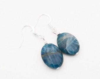 Blue Apatite Gemstone Earrings | Polished Stone Earrings | Blue Stone Earrings | Blue Oval Earrings | Gemstone Earrings | Cathy's Creations