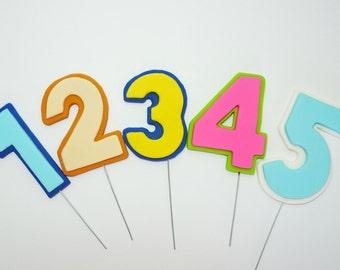 Fondant number cake topper for birthday cake