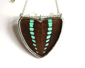 Real Butterfly Wing Necklace Graphium Sarpedon Double Winged Heart Shield