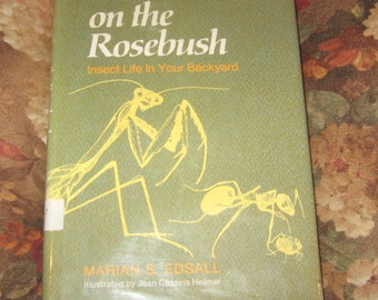 Vintage 1972 Battle on the Rosebush Insect Life in Your Backyard by Marian S Edsall