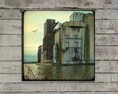 Industrial Art, Surreal, City Image, Urban Water Bird, Seagull And Old Industry, TTV, Cityscape, Nature -  Dark Urban Waters