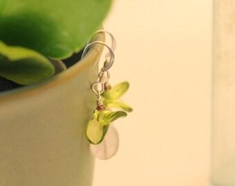 Rose Quartz Baby Orchid Earrings