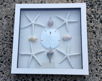 "Beach Theme Home Decor-Shadow Box-""The Star""-Gift Idea-Beach House Decor-Cottage Chic-Mother's Day Gift-Valentine Gift Idea-Valentines Day"