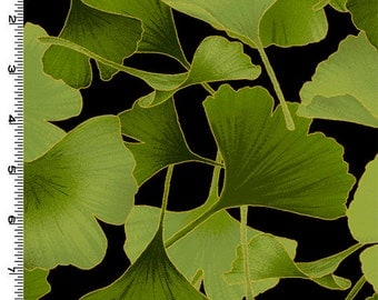 Gingko Leaves Green Gold Tone it Up  Kona Bay Fabric 1 yard