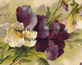 Shabby Vintage Chic Victorian Postcard Klein Collection Beautiful Purple & White Pansies Digital Download Images - dg-Klein-9-3