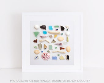 Still Life Photograph, Ocean Study No. 1, Beach Seaside Shells, Fine Art Print, Collection, Colorful, Minimal Modern, Minimalist Wall Art