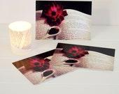 vintage apothecary postcard set, red rose, valentine, fine photography, still life, note card set