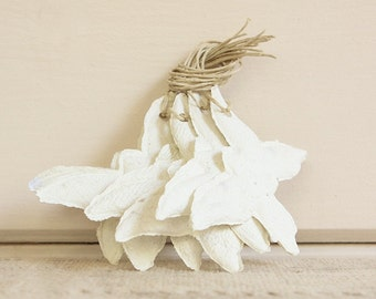 Handmade Paper Gift Tags-Off-White Butterflies, Set of 6