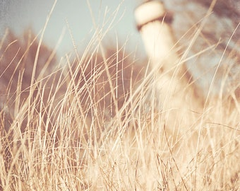 Landscape Photography, lighthouse decor, beach wall art, pale blue, wheat, nautical, Evanston, Chicago, nature wall art print, neutral art