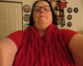 Hand Knit Basket Weave Reversible Red Scarf using Merion Wool