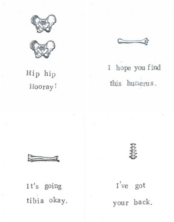 Funny bone anatomy