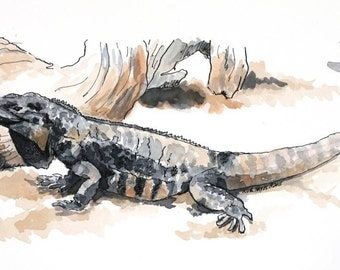 "Iguana lizard watercolor original reptile painting 10.5"" x 4.5"" animal art pen and ink gray brown boy's room"