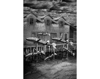 Migration of Wooden Fish on the Carp River by Fishtown in Leland Michigan A Black and White Fine Art Surreal Fantasy Photograph