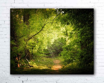 The Secret Path - fine art photography, green forest photography, magical fairy tale, nature photography, woods, hiking, woodland decor