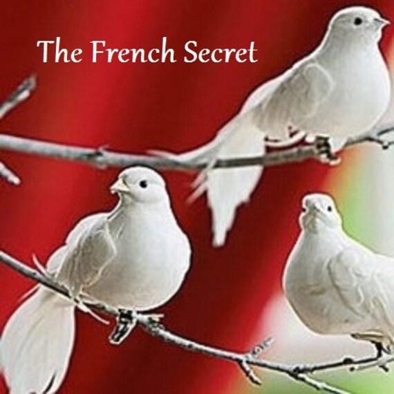 Christmas Tree Doves: Christmas 6 White Dove Ornament Tree Topper Decoration Snow