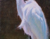 Great Egret Study (original oil painting)