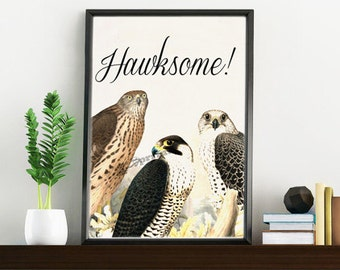 Awesome funny art: Hawksome hawks collage - White paper bird collage  print  - Love birds art WAN084