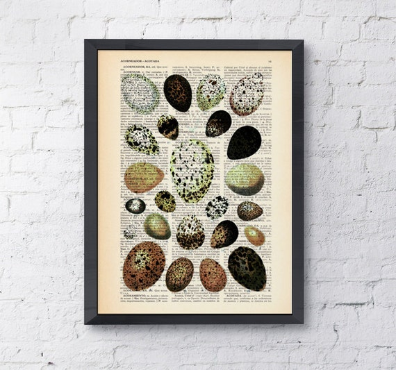 Dictionary page book art print Egg collection Print on Vintage dictionary page illustration book print  art ANI081