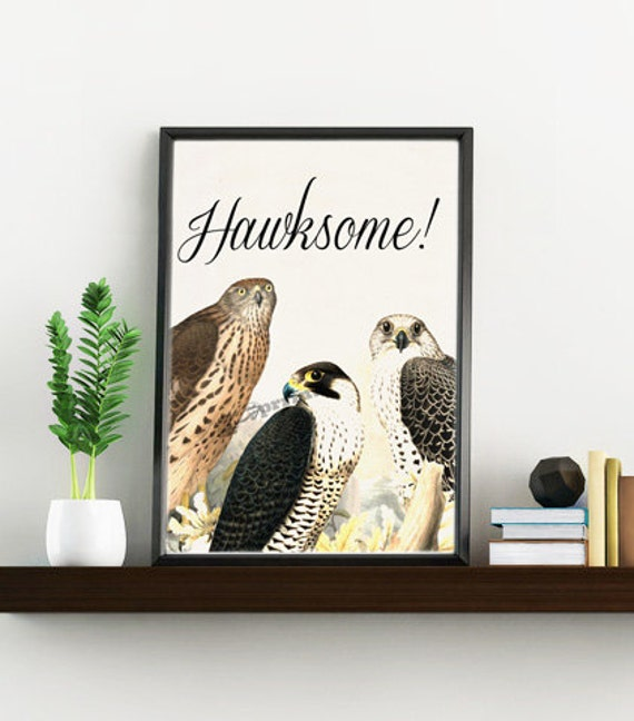 Christmas Sale Awesome funny art: Hawksome hawks collage - White paper bird collage  print  - Love birds art ANI196WA4