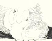 Drawing original SWANS // affordable bird sketches by Elisaveta Sivas // 5,5 x 7,5'