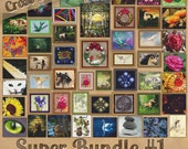 50 Cross Stitch Patterns! Fractals Flowers Holidays Animals Fantasy More - Modern Counted XStitch Designs on CD Quick Shipping