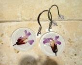 Herb Robert Pressed Flower Earrings, plant jewelry, flower jewellery, wild geranium, glass earring, wild flower