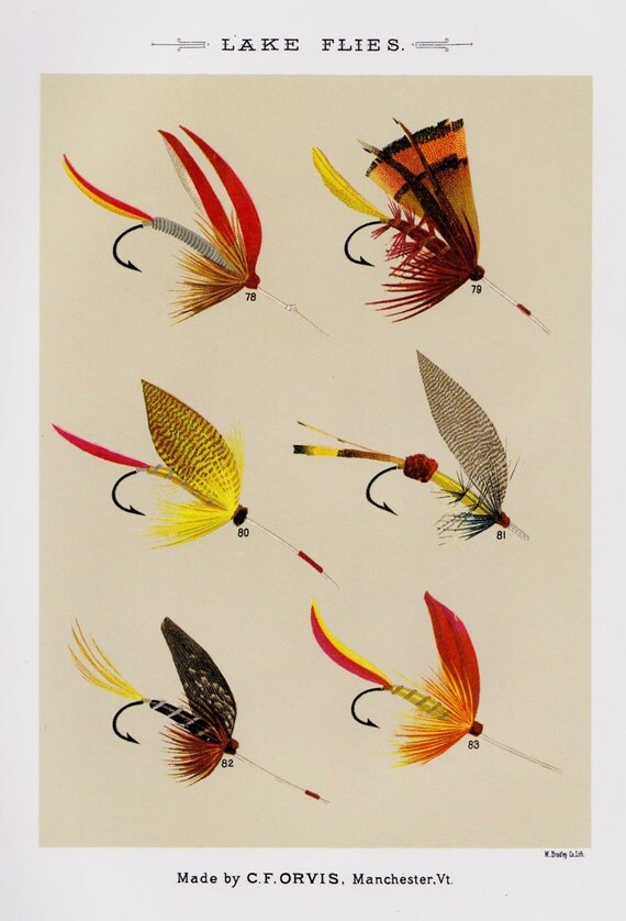 Fishing decor fly fishing print lake flies print by for Fly fishing decor