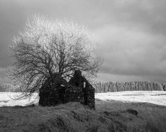 Ireland Photography - Abandoned Cottage Print - Black and White Northern Ireland Art - Bleak House in the Sunset - 8x12