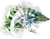 Chameleon watercolour - wildlife art - nature print of original artwork