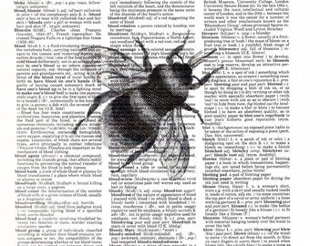 Vintage Wall Art Print - Dictionary Art - Vintage Dictionary Paper - Bee