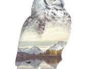 Owl Art Print - Faunascapes by WhatWeDo