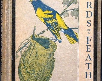 1930 Birds Of A Feather The Cheerful Book Of Brave Birds by Murlie Burns Wike Just Right Books Illustrated Bird Stories